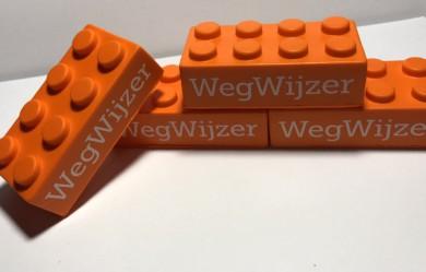 Kwartiermaker en manager WegWijzer, BiSC/SPN